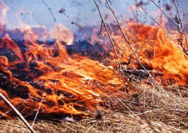 В жаркую погоду пожарная опасность возрастает